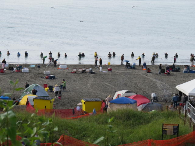 Fisherman & Families in the mouth of the Kenai Peninsula