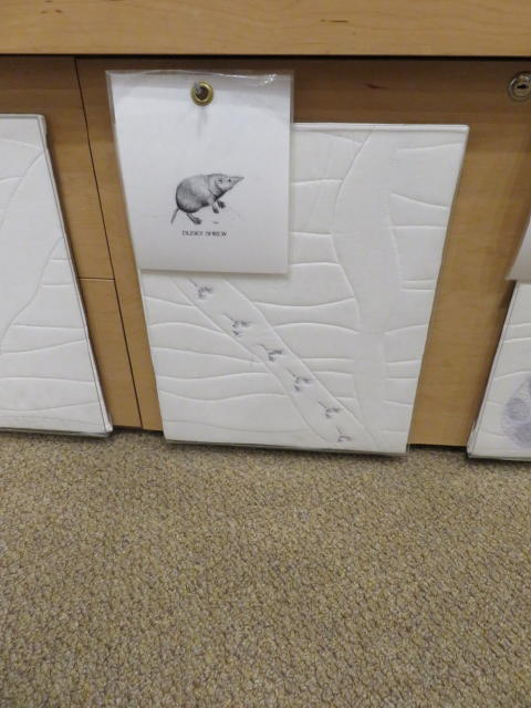 Quilted Paw Prints of a Shrew