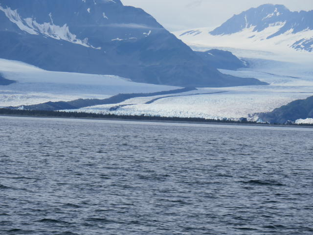 Look at the neat lines as this glacier flows into the sea