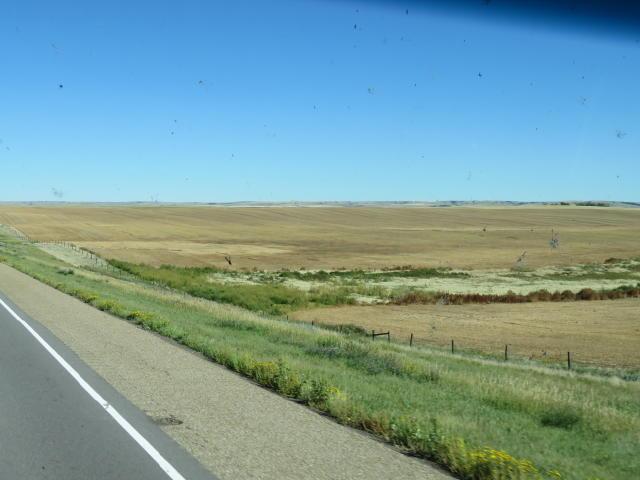 Miles of grain fields