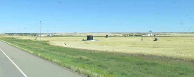 In Alberta, they 'harvest' oil as well