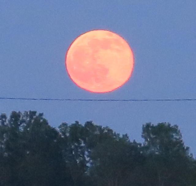 1st-moon