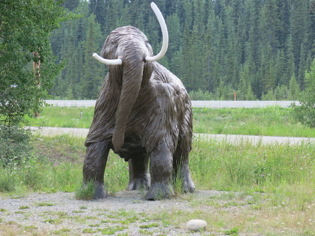 A Prehistoric Wooly Mammoth